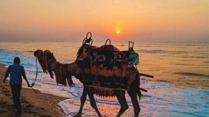 Puri Beach - Asia's First Blue Flag Certification Beach